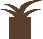 Pineapple Web Studio