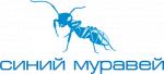 Синий муравей