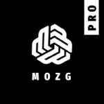 MOZG.PRO