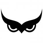 «Сова»