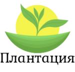 "ООО ""Плантация"""