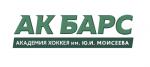 Академия хоккея АК Барс им. Ю.И. Моисеева