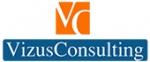 Vizus Consulting