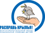 Благотворительный фонд социальной помощи детям «Расправь крылья»