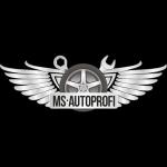 Компания MS-AUTOPROFI