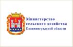 МСХ калининград