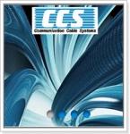 Компания CCS